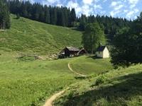 Steiner Alm(c)Berchtesgadener_Land_Tourismus